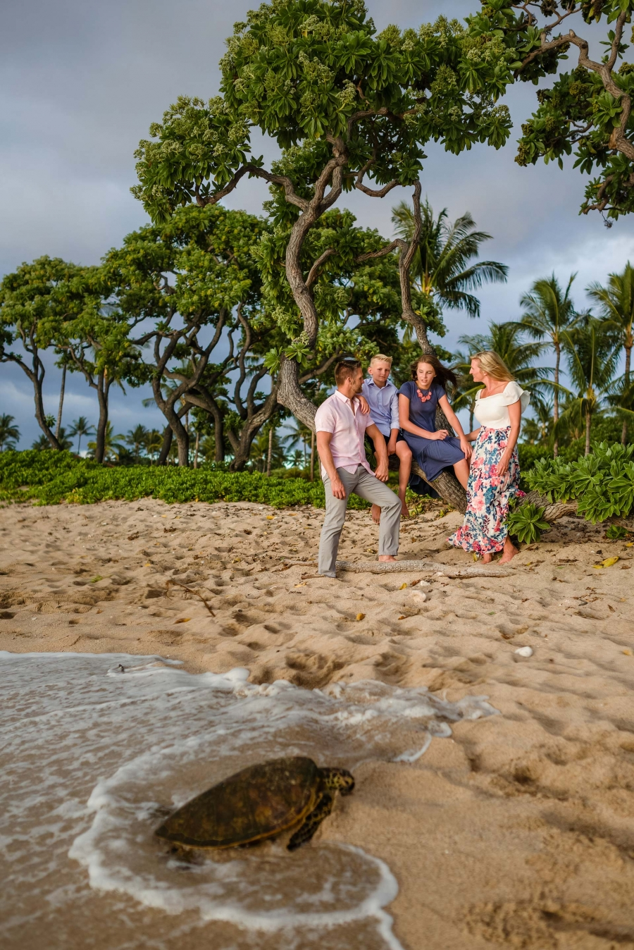 family in hawaii with a turtle